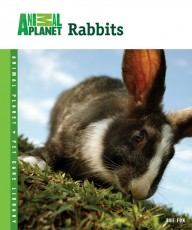 TFH Animal Planet Pet Care Library Rabbits Book