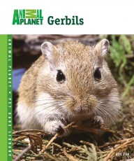 TFH Animal Planet Pet Care Library Gerbils Book