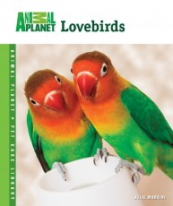 TFH Animal Planet Pet Care Library Lovebirds Book