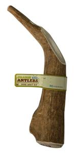 Prairie Dog Pet Products Deer Giant Antler 8-9 inches