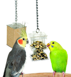 Caitec Creative Foraging System Foraging Box Feeder